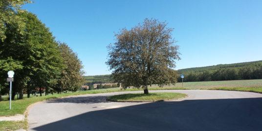 Mietwohnung: Vermietung von 2-Raum Wohnung in Schönau-Berzdorf, 50 qm