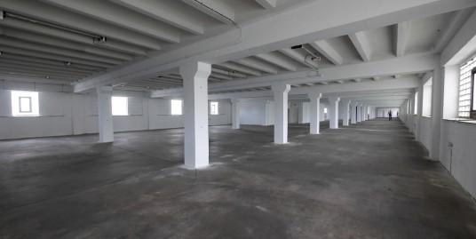 Gewerbeobjekt: Vermietung von Große Lager-/Produktionshalle von ca. 640 m² bis ca. 2500 m²